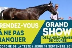 Participez au Grand Show Anglo course 2019